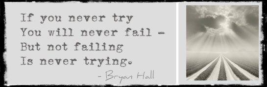 If you never try, you will never fail ...